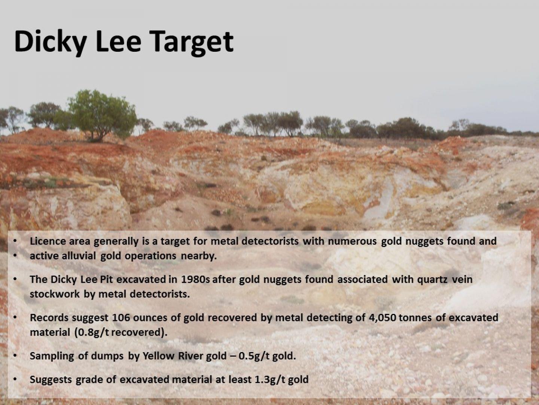 Dicky Lee Target
