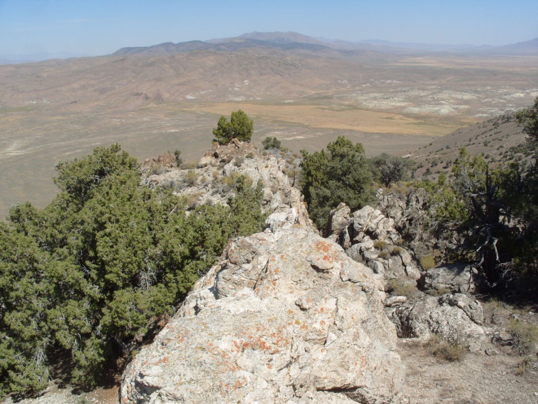 Ridge Limestone Project