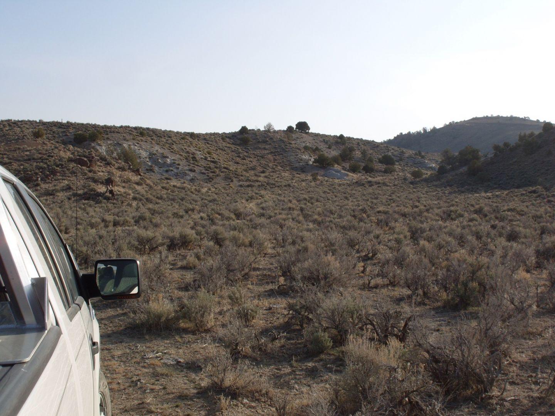 Pozzolan Outcrop