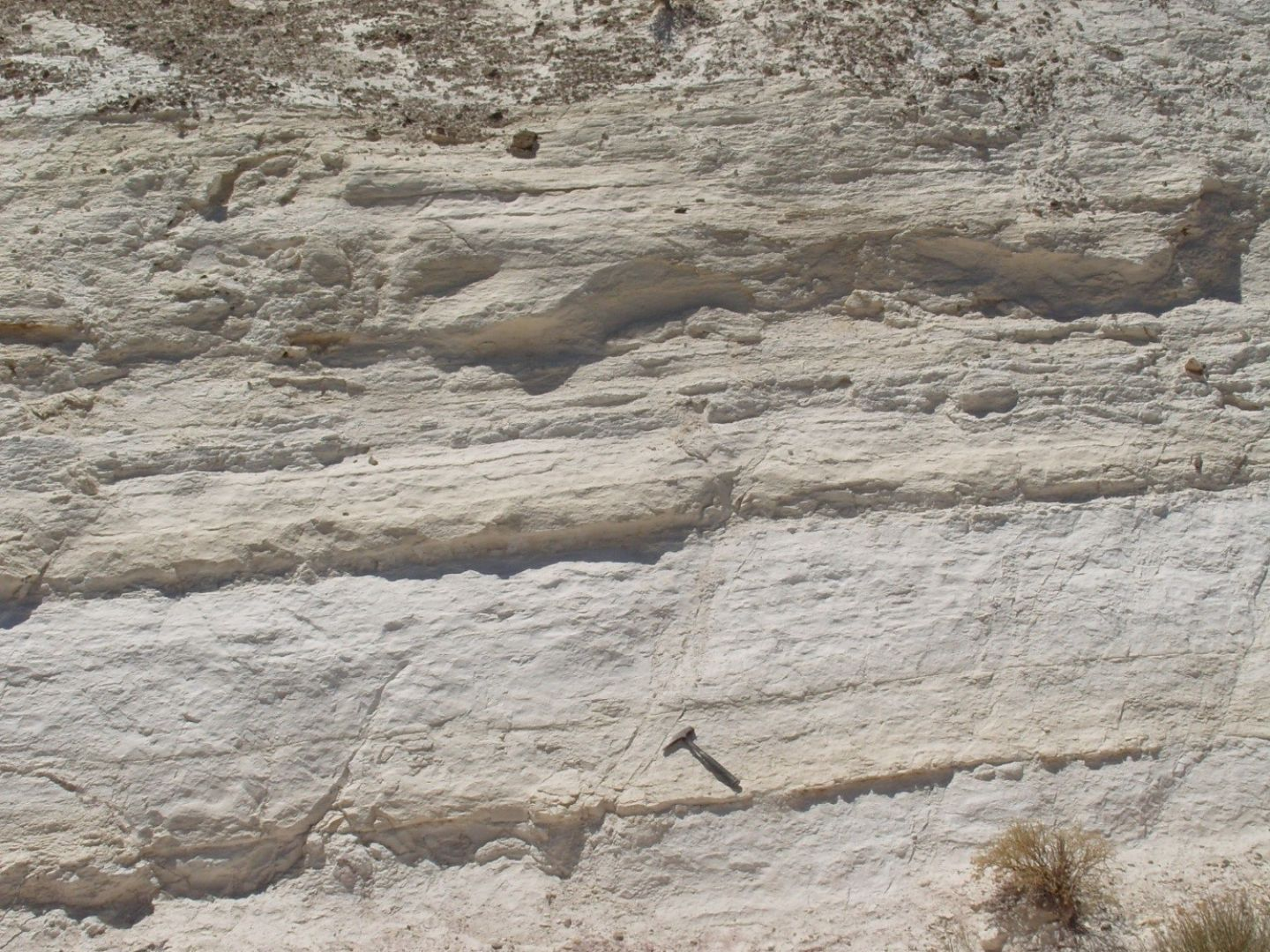 Close up of thick diatomite exposure above valley floor