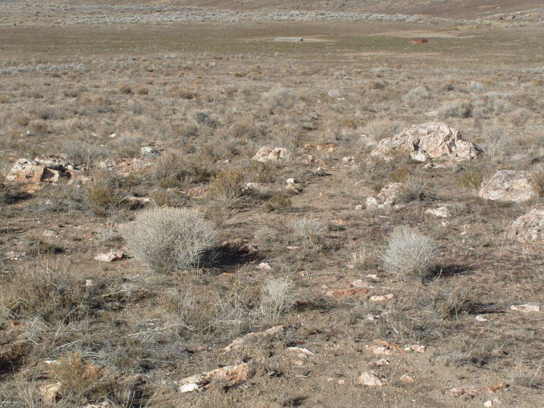 Unworked orogenic quartz veins/stockworks in Cretaceous granite host