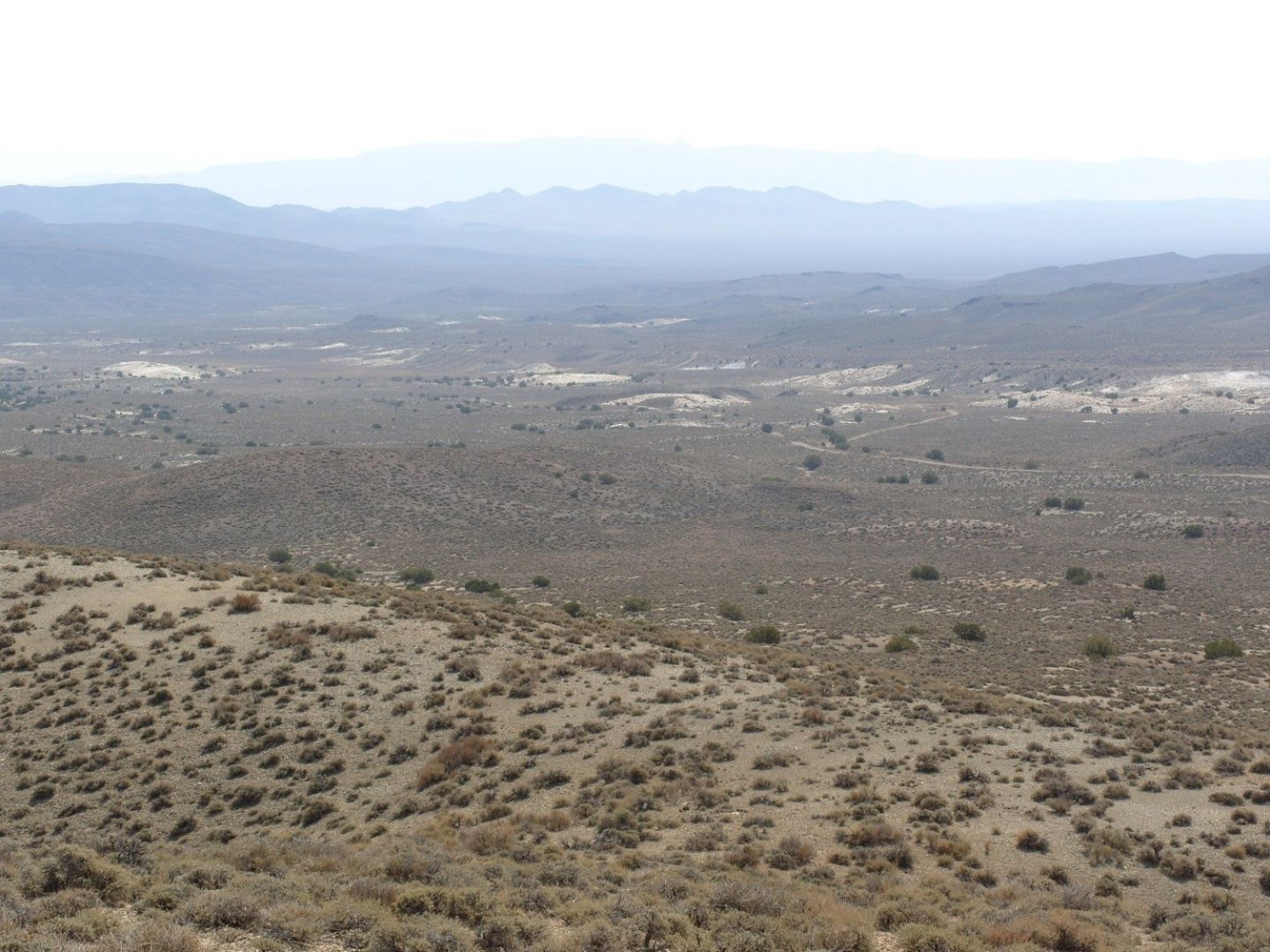 Extensive outcrops of diatomite (white areas) on the County Line claim block