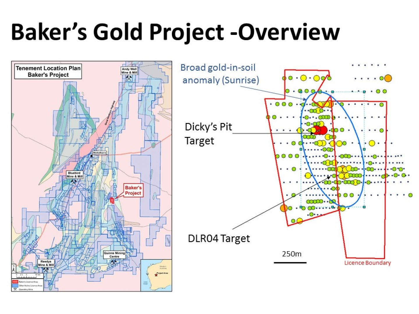 Baker's Gold Project Overview